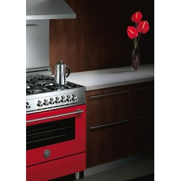 Духовой шкаф серия «PROFESSIONAL» rosso 61